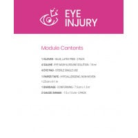 Eye Injury Module - Cardboard
